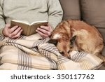 old man sitting on the sofa... | Shutterstock . vector #350117762