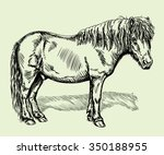 hand drawn realistic... | Shutterstock .eps vector #350188955