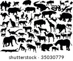 illustration with animals... | Shutterstock .eps vector #35030779