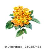 Watercolor Painting Of Yellow...