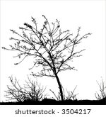 Tree and grass / vector silhouette.  Ideally for your use - stock vector