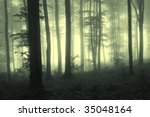 Fog In The Forest With Trees I...