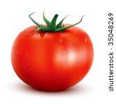 realistic vector tomato | Shutterstock .eps vector #35048269