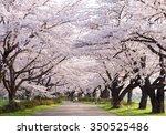 Iwate  Japan   April 17  ...