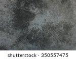gray wall | Shutterstock . vector #350557475