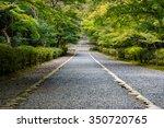 Stone Path Through A Dense...