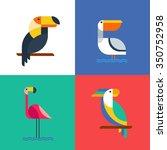 exotic tropical birds flat... | Shutterstock .eps vector #350752958
