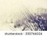 winter landscape.winter scene ... | Shutterstock . vector #350766026