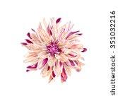 Stock photo watercolor flower illustration 351032216