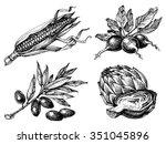vegetables set  isolated... | Shutterstock .eps vector #351045896