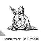 Stock vector brush painting ink draw isolated rabbit illustration 351296588