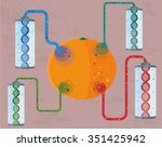 gmo concept of  genetically...   Shutterstock .eps vector #351425942