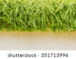slab and grass of nature on... | Shutterstock . vector #351713996