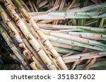 cutting sugarcane put on floor   Shutterstock . vector #351837602