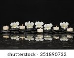 Row Of Five Orchid With White...