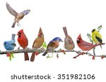 Songbird Celebration