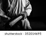 close up of young martial arts...   Shutterstock . vector #352014695