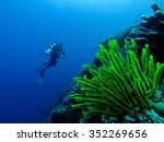 Very Bright Green Underwater...