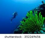 Very Bright Green Underwater...