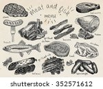 meat and fish menu  steak ... | Shutterstock .eps vector #352571612