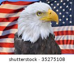 bald eagle superimposed on... | Shutterstock . vector #35275108