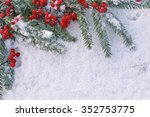 viburnum with christmas  tree... | Shutterstock . vector #352753775