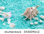 Crystals Of Sea Salt With Whit...