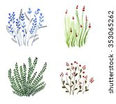 hand drawn set of watercolor... | Shutterstock . vector #353065262