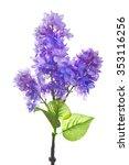 lilac artificial flower... | Shutterstock . vector #353116256