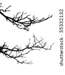 vector silhouette of the branch ...   Shutterstock .eps vector #35332132