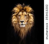 portrait of a beautiful lion ... | Shutterstock . vector #353413202