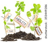 Small photo of Photo of plants growing from soil heaps holding paper tags with ABILITY conceptual words