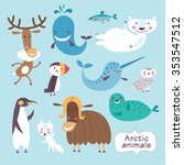 cute animals of arctic.... | Shutterstock .eps vector #353547512