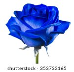 Close Up Blue Rose Isolated On...