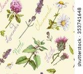 vector vintage seamless pattern ... | Shutterstock .eps vector #353741648