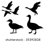 vector silhouette  geese on... | Shutterstock .eps vector #35392828