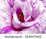 Lisianthus Flower  Closeup