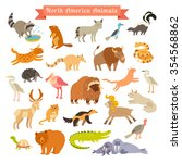 Постер, плакат: North America animals vector