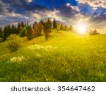 few trees under the rainbow on agricultural meadow with flowers on  hillside near forest in morning light in evening light - stock photo