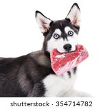 Dog Holding Raw Meat In Its...