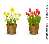 spring flowers daffodils and... | Shutterstock .eps vector #354807572