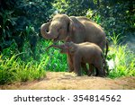 Stock photo mother elephant with baby 354814562