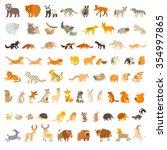 mammals of the world. animals... | Shutterstock .eps vector #354997865
