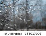 blurred background of dew drops ... | Shutterstock . vector #355017008