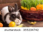 Cute Easter Bunny With Easter...