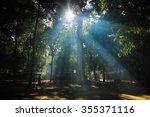 monk walk in forest temple in... | Shutterstock . vector #355371116