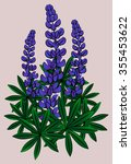 inflorescence of lupines  blue... | Shutterstock .eps vector #355453622