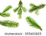 branches of fir tree isolated... | Shutterstock . vector #355601825