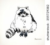 raccoon  vector illustrations | Shutterstock .eps vector #355729382