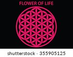 flower of life vector | Shutterstock .eps vector #355905125